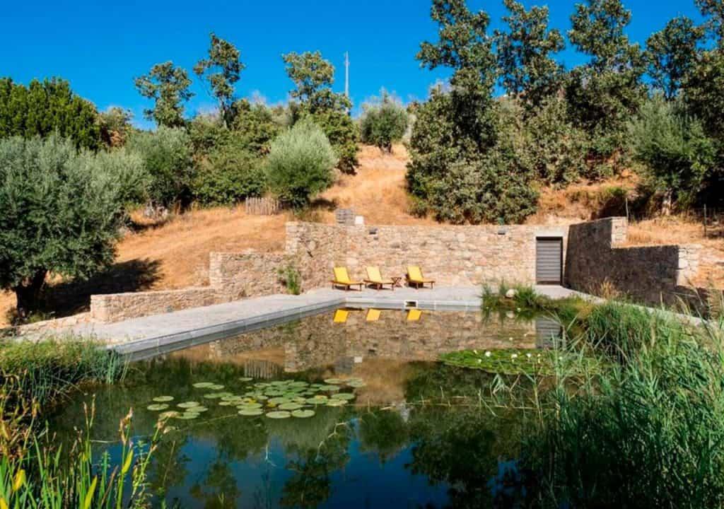 Quinta Velha do Pêro Boi tem piscina biológica