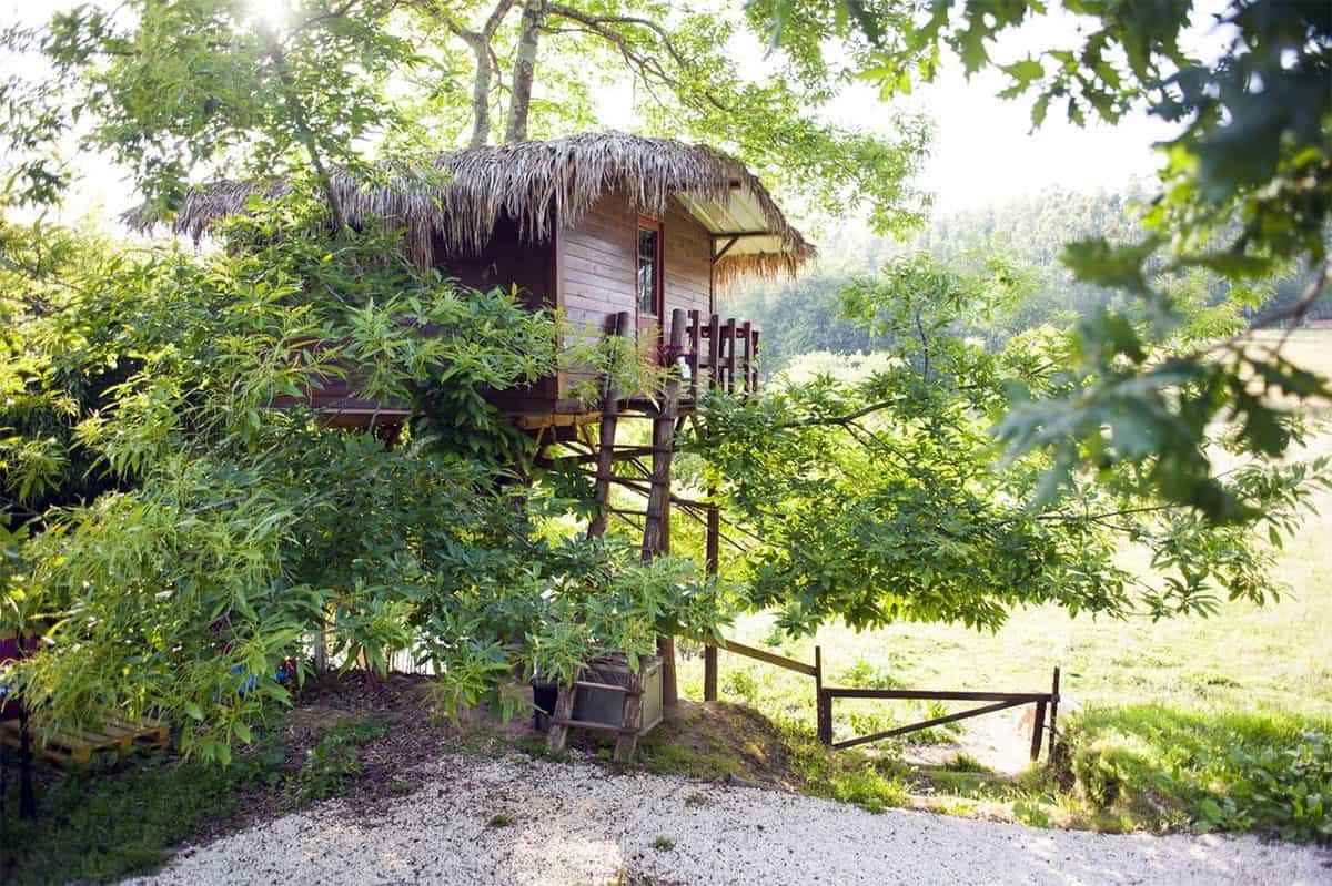 Casa na árvore Quinta Vale da Silva