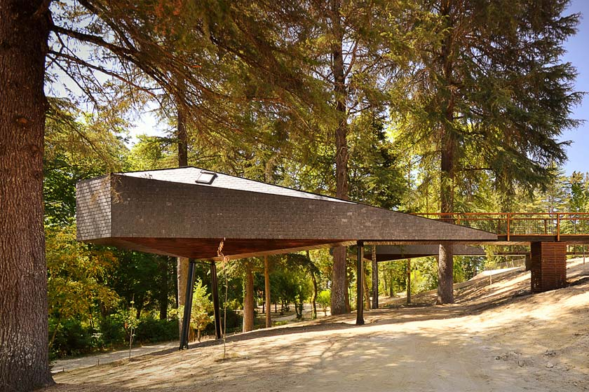 Snake Tree House