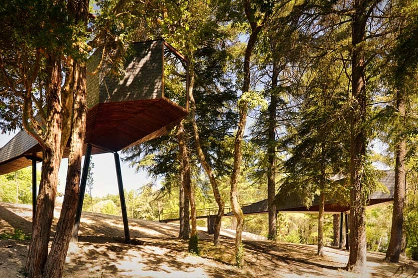 Aspecto exterior da Snake Tree House